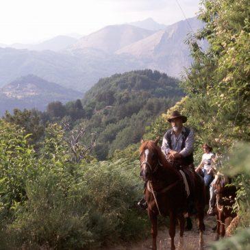 trekking cavallo gruppo